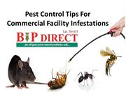Pest Control Tips For Commercial Facility Infestations