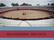 BULLFIGHTING- THE FACTS