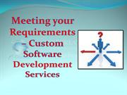 Meeting your requirements – custom software development services