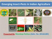 EMERGING INSECT PESTS OF INDIAN AGRICULTURE