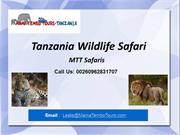 Affordable Tanzania Wildlife Safaris | Tailor Made Tanzania Safari