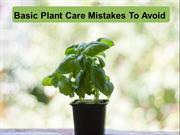 Basic Plant Care Mistakes To Avoid
