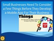 Small Businesses Need To Consider a Few Things Before They Develop a M