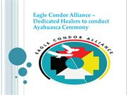 Dedicated Healers to conduct Ayahuasca Ceremony