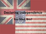 Declaration of Independence You Mad, Bro?