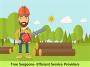Tree Surgeons- Efficient Service Providers