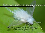 BIOCONTROL OF HEMIPTERAN INSECTS