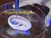 Órganos-Artificiales