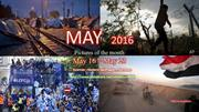 MAY 2016- Pictures of the month - May 16 - May 23