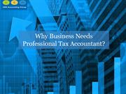 Why Business Needs Professional Tax Accountant?