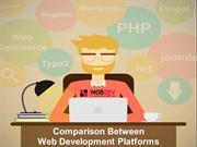 Which Web development platform is suitable for your business