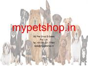 Buy Best quality of products only at mypetshop.in
