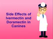 Side Effects of Ivermectin and Doramectin in Canines
