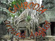 Cambodgia, Ta Prohm Jungle Temple 3