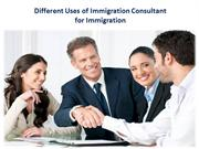 Different Uses of Immigration Consultant for Imigration