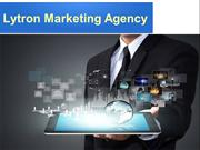 Find the Best Web Design Company in Florida