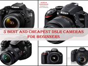 5 Best and Cheapest DSLR Cameras for Beginners