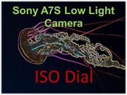 Sony A7S low light camera