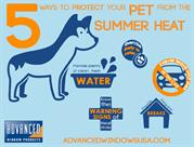 Protect Your Pet From Summer Heat Infographic