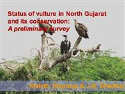 Status of vulture in North Gujarat