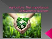 Agriculture- The Importance Of  Myanmar Business