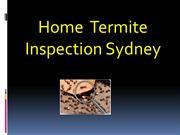 Best Home Termite Inspection Sydney