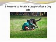 3 Reasons to Retain a Lawyer After a Dog Bite