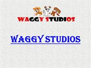 Online Pet Supply Store for Dog Accessories In India