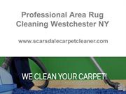 Professional Area Rug Cleaning Westchester NY