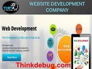 Thinkdebug is a multinational company in indore.
