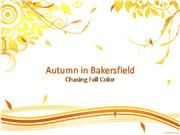 Autumn in Bakersfield