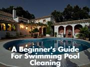 A Beginner's Guide For Swimming Pool Cleaning