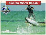 Fishing Miami Beach