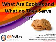 What Are Cookies and What do They Serve For?
