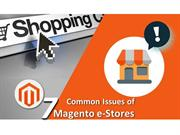 7 Common Issues of Magento e-Stores