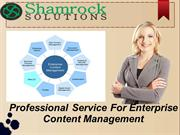 Professional Service For Enterprise  Content Management