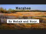 Marshes by noor and mehak