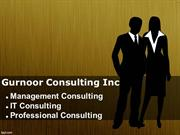 Professional Consulting and Management Consulting- Consulting Firms