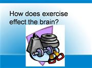 How exercise effects the brain