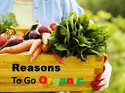 Top Reasons Why You Should Go Organic