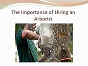 The Importance of Hiring an Arborist