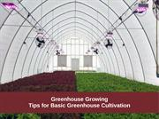 Greenhouse growing Tips to basic greenhouse cultivation