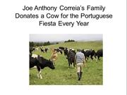 Joe's Family Donates a Cow for the Portuguese Fiesta Every Year