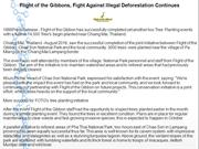Flight of the Gibbons, Fight Against Illegal Deforestation Continues