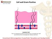 Download Microorganism Powerpoint Template and Backgrounds