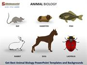Get Best Animal Biology PowerPoint Templates and Backgrounds