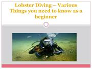 Lobster Diving – Various Things you need to know as a beginner