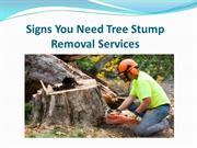 Signs You Need Tree Stump Removal Services