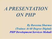 PHP Development Services Mohali