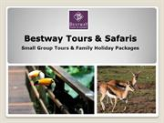 African Safari Packages | Bestway Tours & Safaris